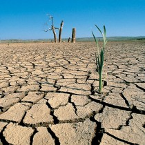 Las prolongadas sequías podrían ser un problema cada vez más frecuente. Conocer si se van a producir con bastante antelación es esenciales para millones de agricucltores.